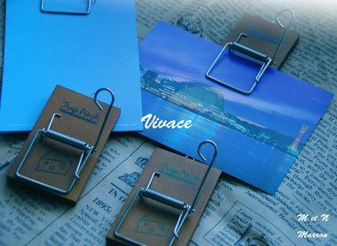 vivace02.jpg