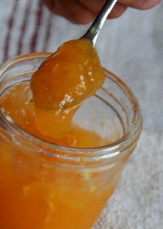 0429 柑橘ゼリー