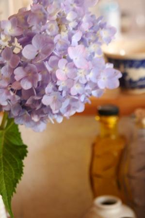 0711 紫陽花