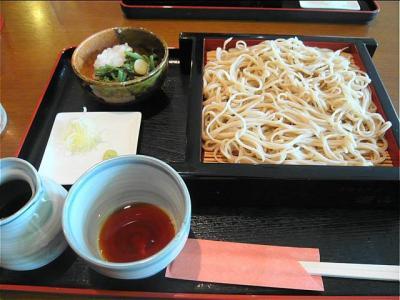 08-7-26 山菜おろし