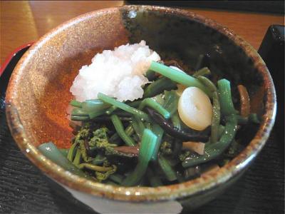 08-7-26 山菜