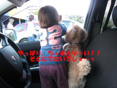 ライア&あーちゃんNo3