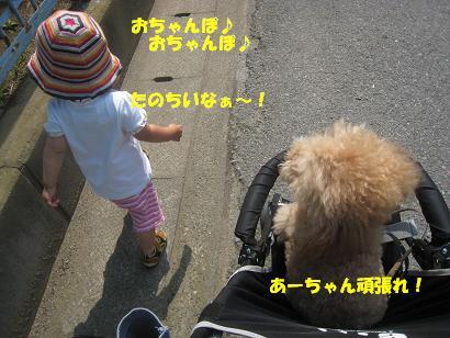 ライア&あーちゃん