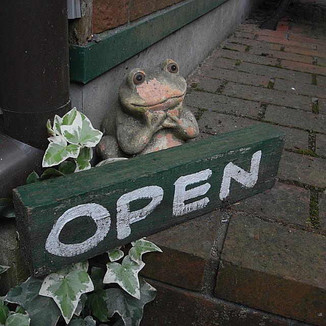 開いてますよね?