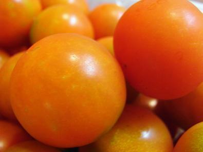 0807ミニトマト