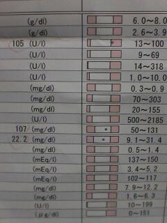 健康診断2
