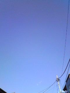 20080401_3.jpg
