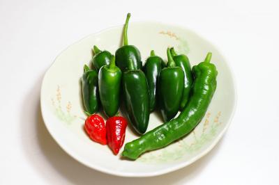 080706_peppers.jpg