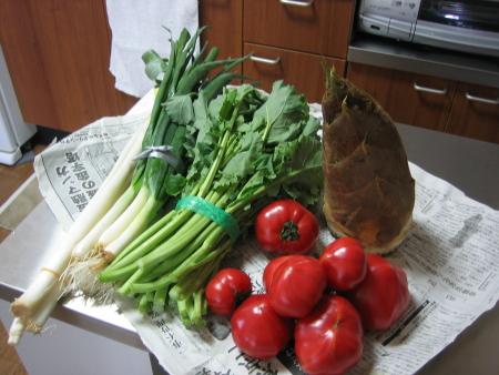 2008-4-17 野菜たち