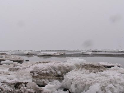 春国岱の流氷