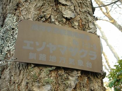 標準木の標識