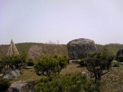のんびり(ぼ~~っと)お花見です(*^_^*)