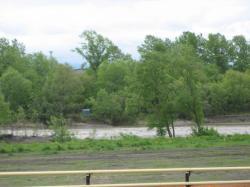 川の水が音を立てて流れていきます
