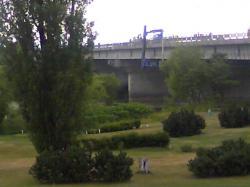 秋月橋工事、進んでいますね(^^)