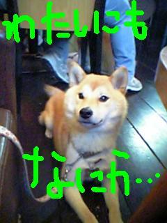 2008_0622_162308AA.jpg