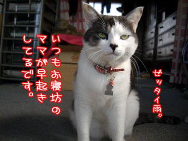 2008-5-2-2_20080502211053.jpg