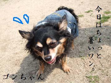 DSCF0149.jpg