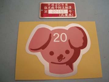DSCF2900.jpg