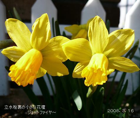 P1050377_j1.jpg