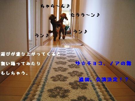 踊ったり?5
