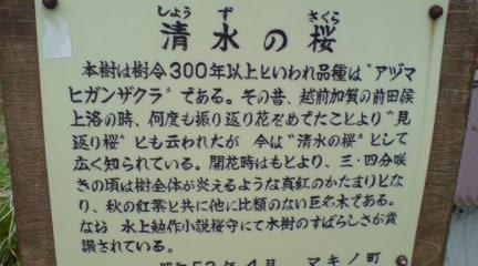 20080416182647.jpg