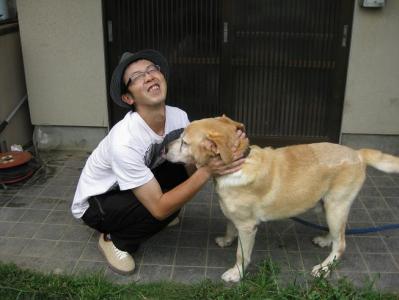 ラブラドールレトリバー/愛犬ジョーダン
