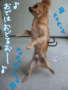 おまけダンス