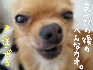 えくさんへ☆