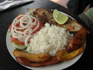 venefood (4)