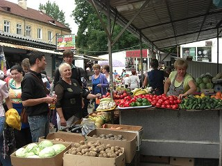 lviv (15)
