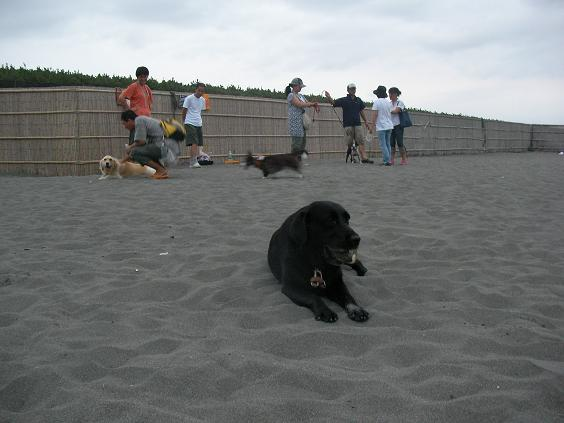 8月10日日曜の夕方T-BARの砂浜にて・・