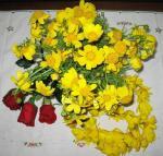 プロトマイア(5月1日のお祝いをギリシャ語でこう呼ぶ)に摘むマイスの花