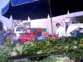 朝市の青菜だけ売る農家の人