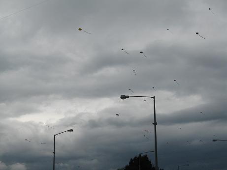 あいにくの曇りにもめげず、大量の凧が風になびいていました。