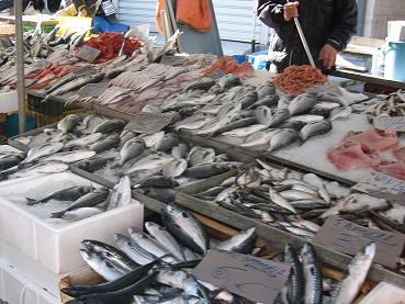 魚を売る人たちは掛け声の威勢がよすぎて、いつもうちの赤ちゃんが泣いてしまいます。