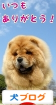 にほんブログ村 犬ブログ