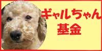 garu_bokin.jpg