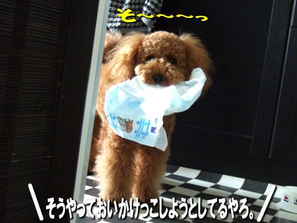 11_20080708192728.jpg