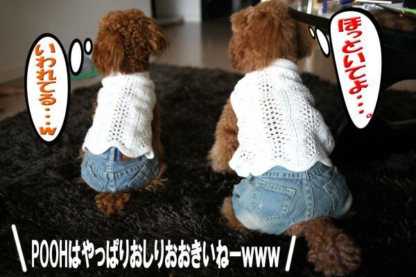 17_20080702165331.jpg
