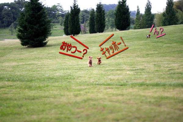 19_20080609211445.jpg