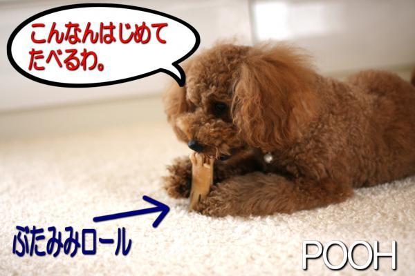 1_20080608141837.jpg