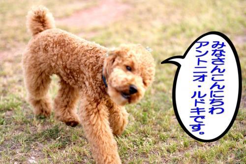 23_20080513191027.jpg