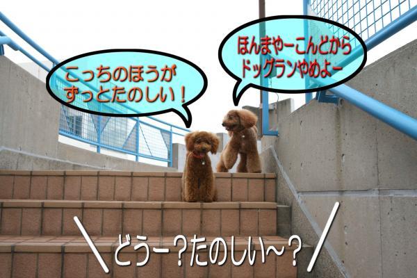 27_20080529171054.jpg