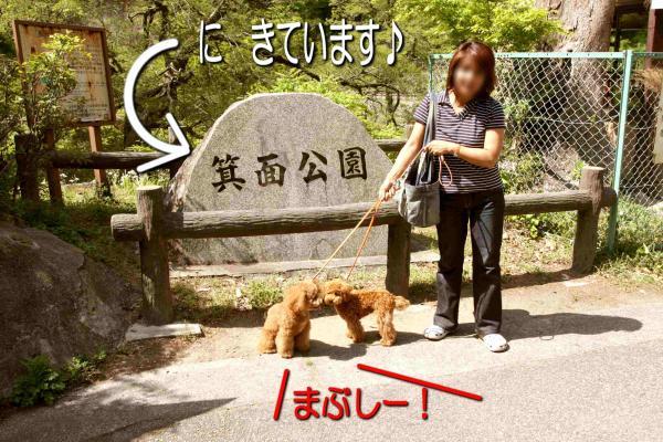 2_20080521193252.jpg