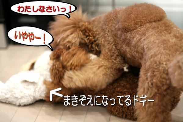 48_20080605200133.jpg