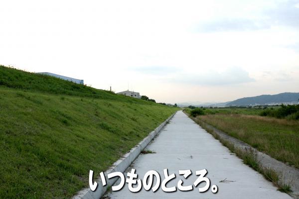 4_20080714170421.jpg