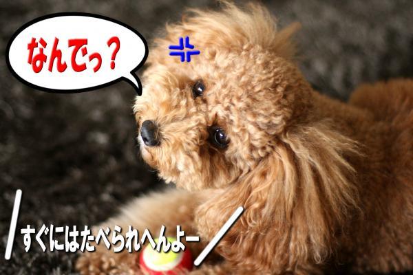 6_20080712191941.jpg