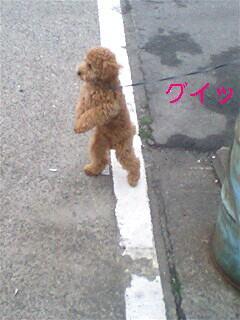 photo_20080422003933.jpg