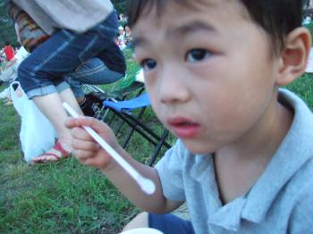 2008_0809写真0012