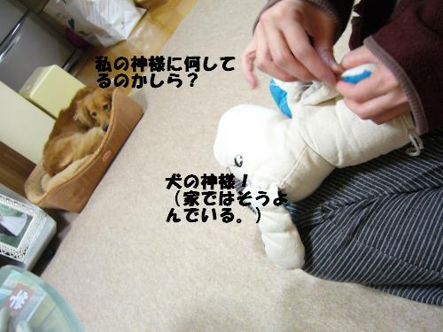 P1040179_convert_20080326105006.jpg